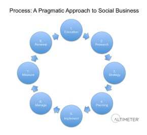 Process: A Pragmatic Approach to Social Business